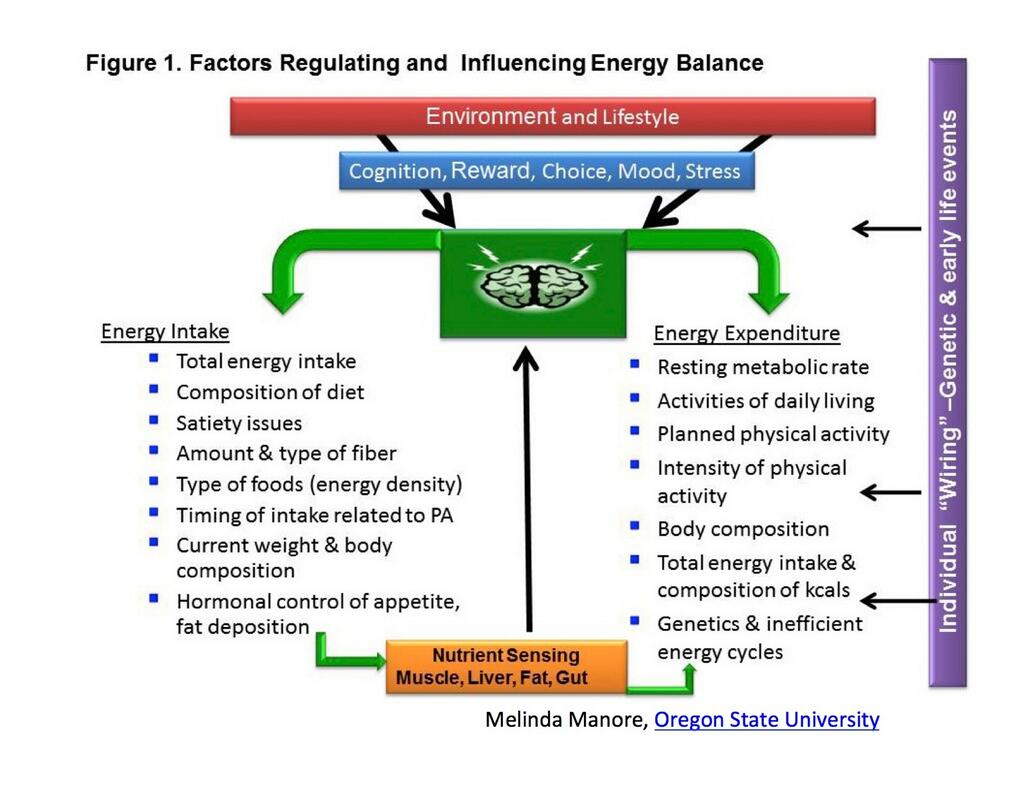 Energiatasapaino
