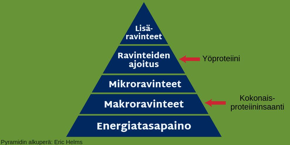 Ravitsemuksen hierarkia